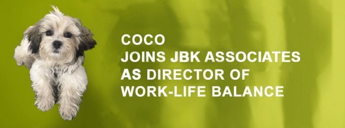 JBK ASSOCIATES INTERNATIONAL HIRES COCO AS DIRECTOR OF WORK-LIFE BALANCE